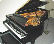 Individual Piano lessons
